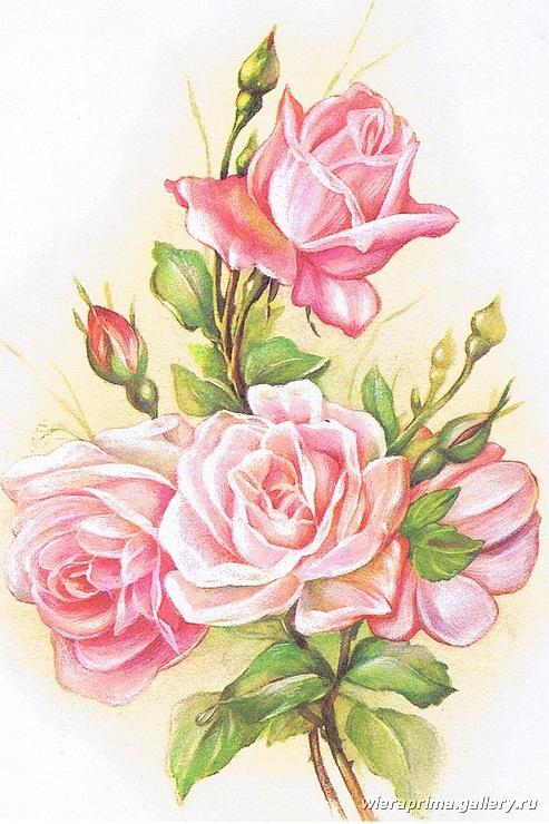 """Схема вышивки  """"нежные розы """" ."""