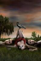 """Сравнивая яблоки и единорогов - первый сезон """"Дневников вампира"""" против второго"""