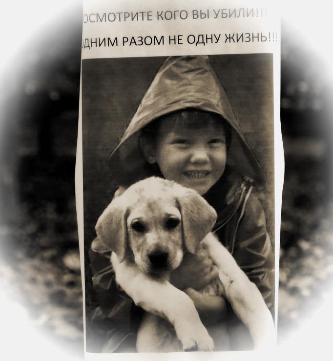 Собачий портрет - Страница 18 141876-b493b-59665048-m750x740-u0209c