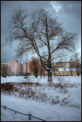 Питер. Юсуповский сад. Декабрь 2010.
