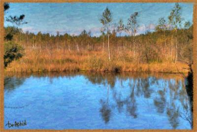 Pseudo-Painting. Осеннее болото.