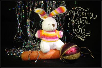 С Новым Годом! 2011