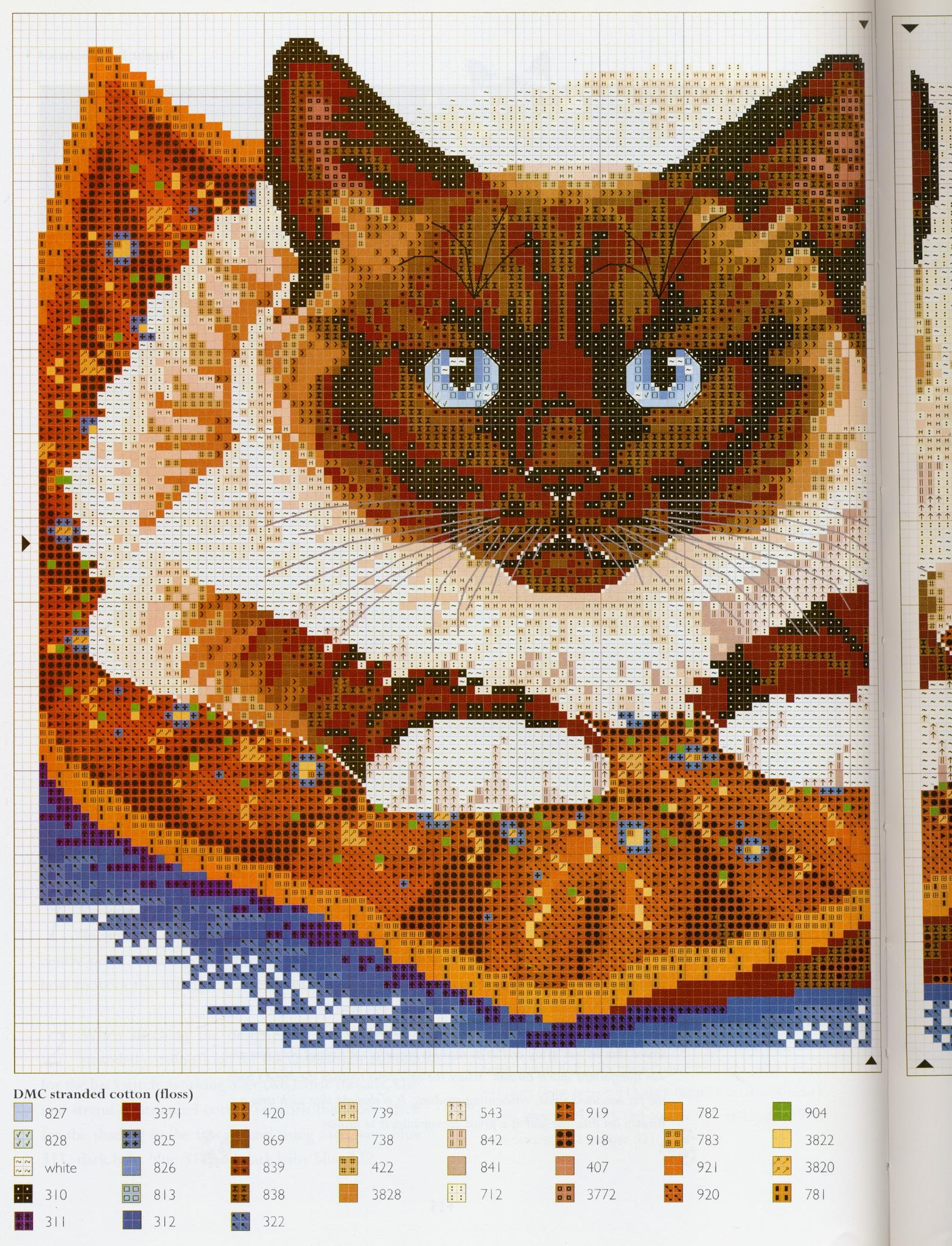 Вышивка крестом сиамская кошка