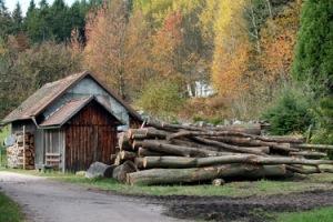 http://data13.gallery.ru/albums/gallery/251524-65902-37434822-h200.jpg